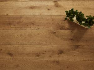 Christleton Oak